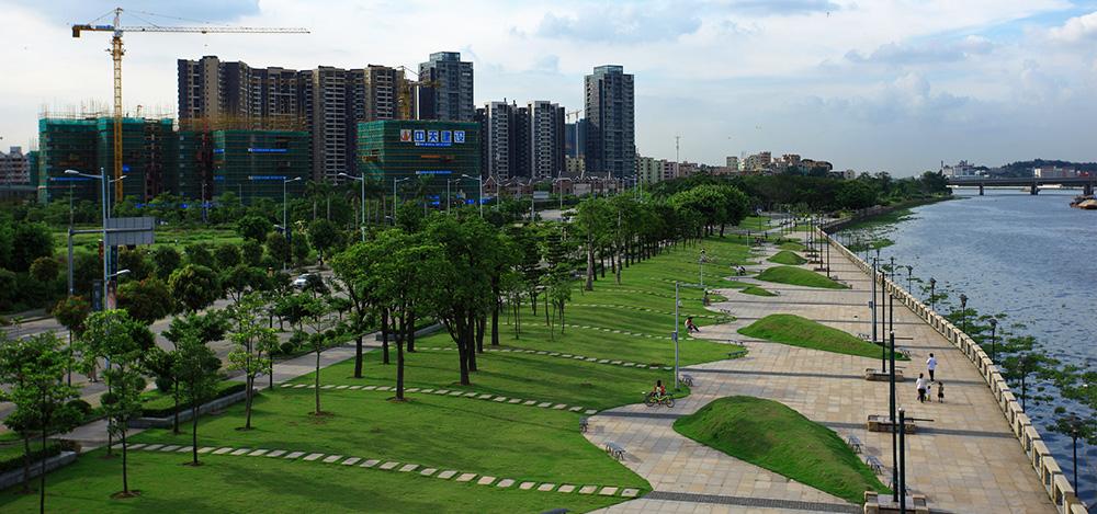 广州市金沙洲居住新城P线景观、K、M、N、U路绿化工程